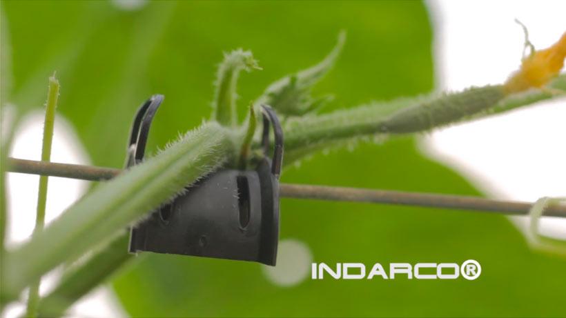 INDARCO GP TECNIC Video Empresa